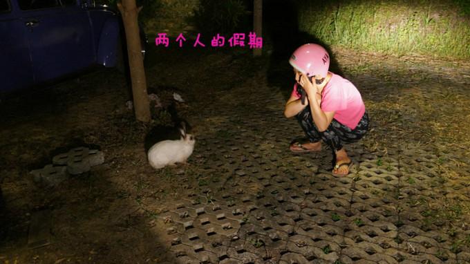 香港澳洲动物资讯