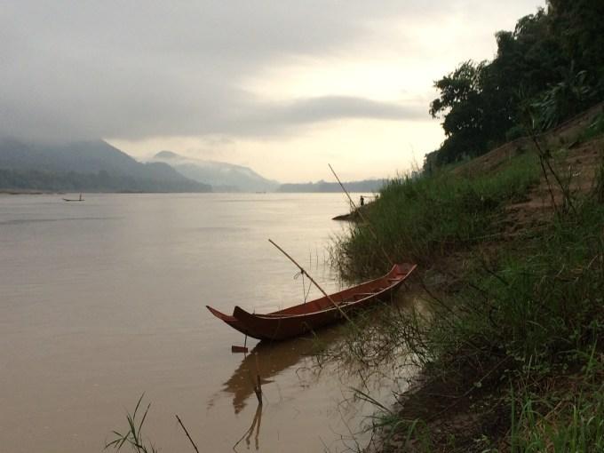 老挝糯米稻田风景图片