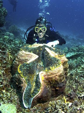壁纸 海底 海底世界 海洋馆 水族馆 360_480 竖版 竖屏 手机